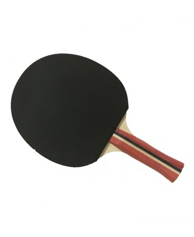 Ping Pong Tactic Table Tennis