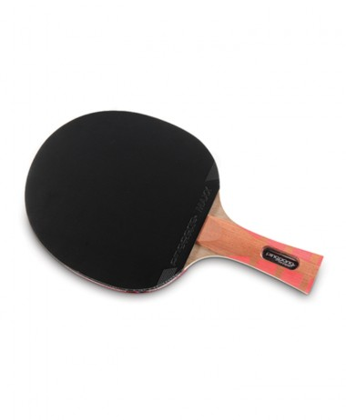 ping pong cARBON FUSION TABLE TENNIS